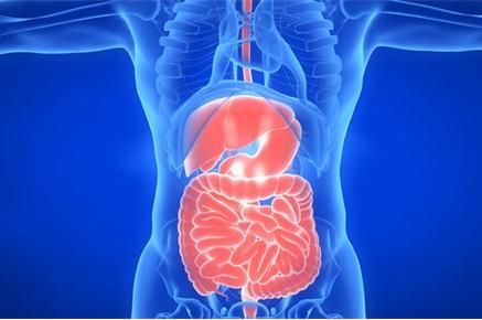 未来医疗的目标:运用类器官系统芯片药物反应开处方