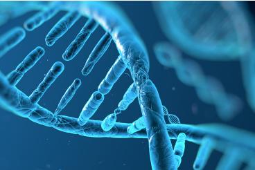 阿兹海默病竟然会遗传?