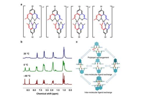 南京大学与斯坦福大学合作发出高度可拉伸自愈合聚合物