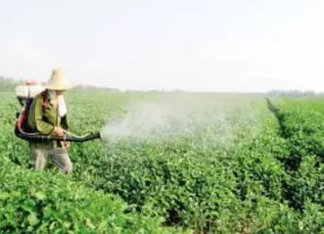 农药、化肥和植物生长调节剂混搭的五大原则及注意事项
