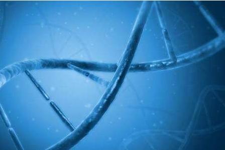 ?2018年全球10大基因测序公司榜单发布