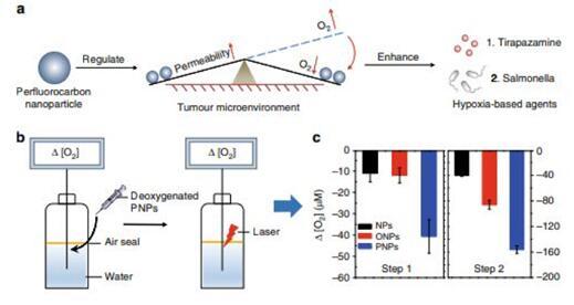 《自然-通讯》重大突破:利用全氟碳化合物提高乏氧药物治疗肿瘤效果