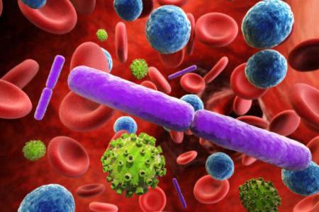 细胞疗法会为何会成为药企必争之地?