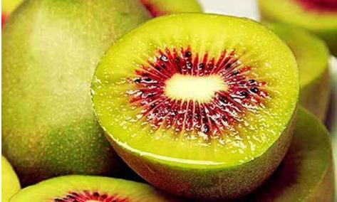红心猕猴桃是转基因吗?揭示猕猴桃基因组学机制