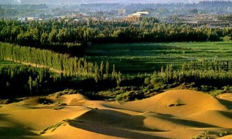 我国土地沙漠化防治现状与应对措施