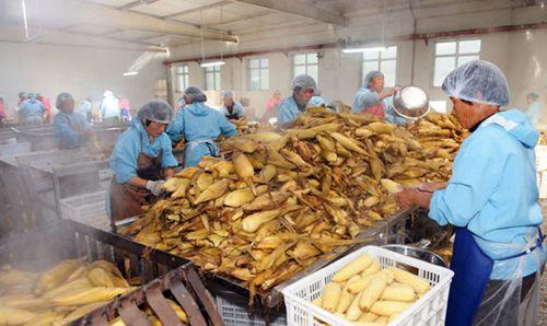 吉林省打造农产品加工全产业链