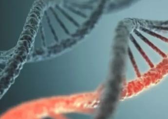 删除老化特定基因可延长寿命60%