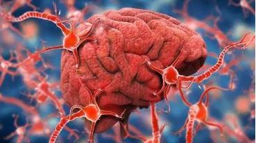 阿尔茨海默病研究现状与进展