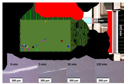 东华大学游正伟教授团队开发出一种高效自愈合弹性体