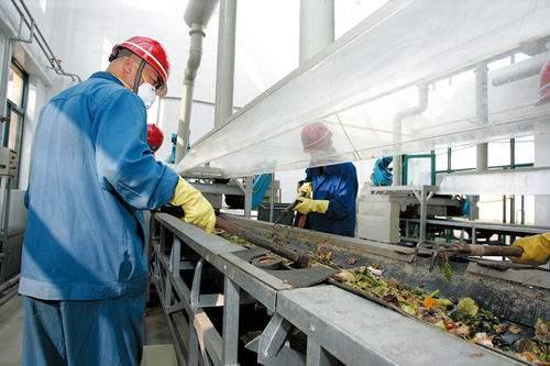 2019年餐厨废弃物资源化利用和无害化处理试点城市验收结果
