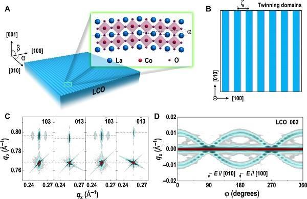 铁弹性薄膜中1D和棋盘状孪晶畴的稳定性