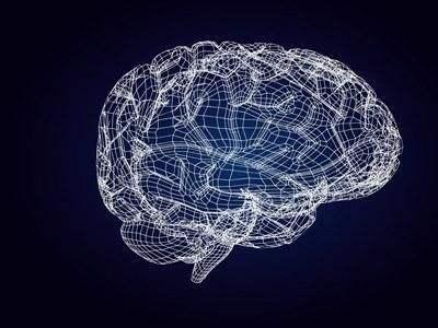 """""""复活""""死猪脑实验:大脑并没有恢复所谓的意识"""