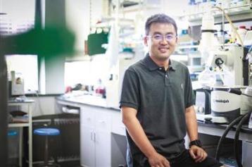 """姜雪峰团队:以""""无机硫向有机硫转化""""理念构建3S绿色硫化学"""