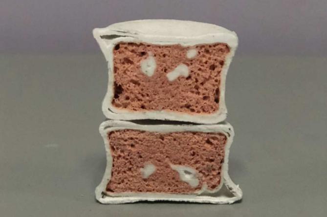 西北工业大学汪焰恩教授团队研制3D打印活性仿生骨可在生物体内发育
