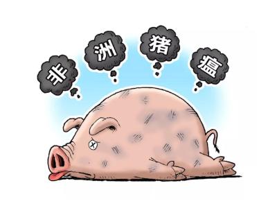 全国非洲猪瘟疫情解除区域已有23个省份全部解除封锁