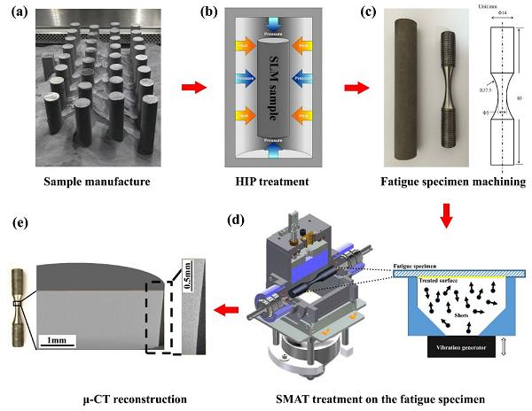 表面机械纳米化可有效提高3D打印钛合金的疲劳强度