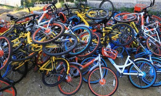 共享单车大战最终结局:哈罗单车市场占有率高达50%