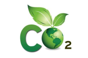 碳定价的现状与趋势