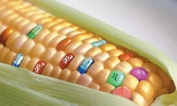 我国农业生物技术发展与应用现状