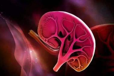 痛风肾患者如何合理选用止痛药?