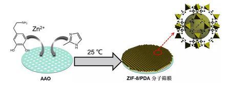 一种全新的绿色常温水相ZIF-8分子筛膜合成法