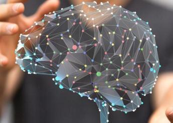 人脑至少要到30岁才能完全发育成熟
