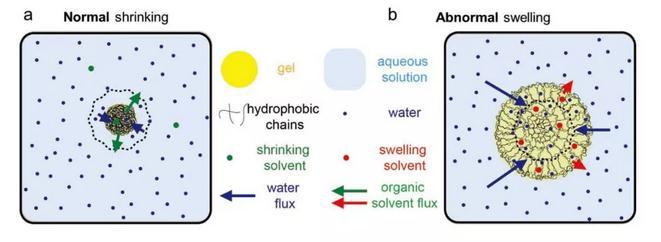 hydrophobic hydrogels:疏水有机凝胶的反常溶胀现象