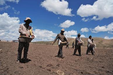 智慧农业:无人机提升草原播种效果