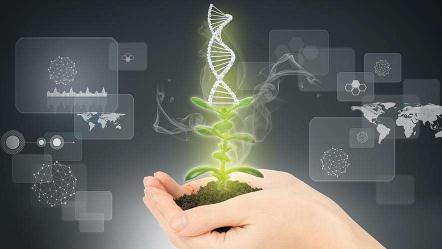 俄罗斯耗资17亿美元支持基因编辑技术,研制基因编辑作物和动物品种