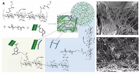 一种纳米纤维水凝胶的复合材料,用于解决软组织修复问题