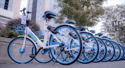 共享单车企业争夺一线城市,哈啰出行违规投放车辆被罚5万元