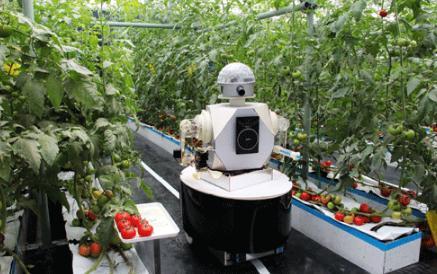 美国开发可采摘西红柿机器人Virgo 1号,三一重机无人挖掘机首次亮相长沙