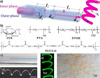 苏州大学郭明雨教授课题组实现螺旋和超螺旋微纤维的连续可控制备