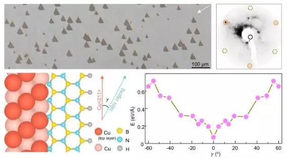 单晶铜衬底实现分米级二维单晶六方氮化硼的外延制备