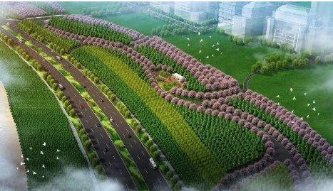 """中—哈""""丝绸之路经济带""""新兴城市生态屏障建设技术合作进展"""