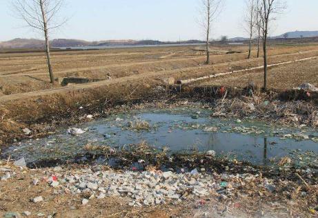 大连市农业农村污染治理攻坚战实施方案公布 加快推进农村生活垃圾污水治理