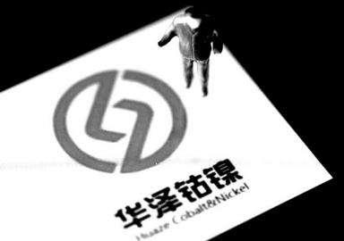 华泽钴镍的造假行为严重,原财务总监郭立红要求免责