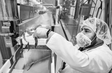 加拿大PlanetShrimp对虾养殖工厂找到了室内商业规模养虾的秘诀