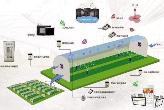 物联网+区块链技术解决果蔬农产品质量安全问题