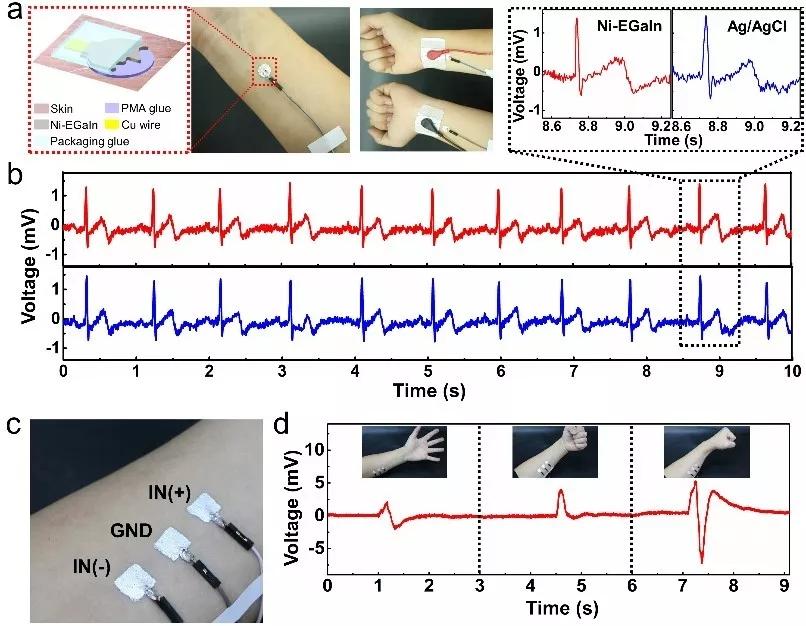 ?清华大学刘静教授团队研发出液态金属电子纹身,可附身在皮肤表面