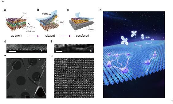 南京大学聂越峰教授课题组制备出基于氧化物钙钛矿体系的新颖二维材料