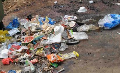"""预计2021年长沙将实现生活垃圾""""零填埋"""""""