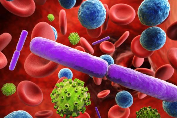 国内外干细胞治疗临床研究发展现状分析