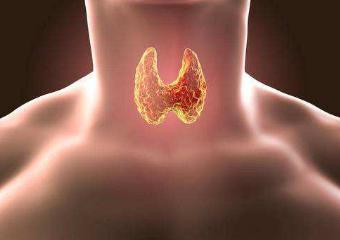 我国甲状腺功能患者已超2亿人,患者的规范治疗率不足5%
