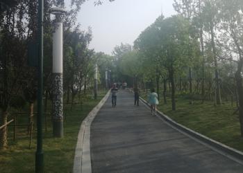 """江苏滨海城管局多措并举优化城区道路扬尘保洁,助力""""三城同创"""""""