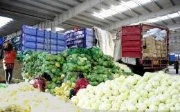 我国中部农产品物流效率及影响因素分析