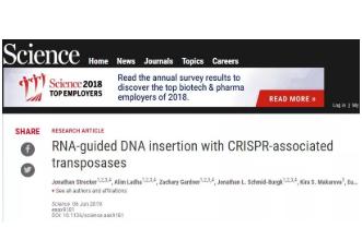 """张锋教授发现小小""""跳跃基因""""CRISPR有很大用处,可抵抗病毒干扰"""