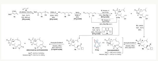 陈悦团队实现抗癌天然产物防风草内酯骨架的高效化学合成
