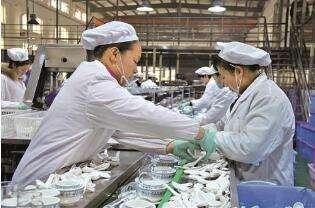 餐具消毒行业卫生安全问题严重,投诉呈上升趋势