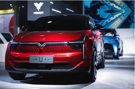 """合众汽车通过两款车型和智能技术初步建立差异化""""人设"""""""